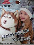 """Подростковые махровые носки """"Алия"""". Термо. Девочка. р. 32-38., фото 4"""