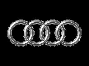 Накладки на задний бампер для Audi (Ауди)
