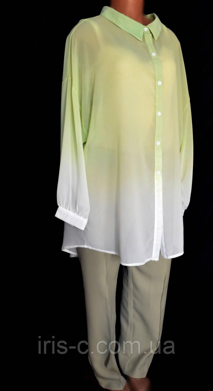 Блуза женская нарядная, элегантная, офисный стиль, очень большой размер 56/58