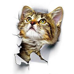 Интерьерная наклейка 3D Кот (25х17см)