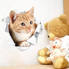 Интерьерная наклейка 3D Кот Рыжий(25х23см)