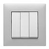Рамка 3Х горизонтальная Lumina-Passion серебристый алюминий, фото 4