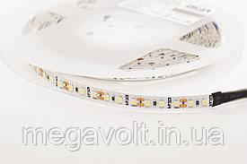 Светодиодная лента ESTAR SMD 3528/120 (IP20) premium 12V белая (6000-6500К)