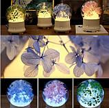 Романтический арома-диффузор из коллекции Природный дар, фото 4