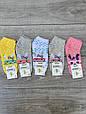 Жіночі шкарпетки зайчик в окулярах бамбук Marde 35-40 12 шт в уп мікс 4 кольорів, фото 2