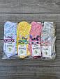Жіночі шкарпетки зайчик в окулярах бамбук Marde 35-40 12 шт в уп мікс 4 кольорів, фото 4