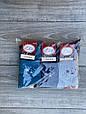 Жіночі носки шкарпетки стрейчеві Житомир Люкс з написом Star 36-40  12 шт в уп мікс з 4 кол, фото 3