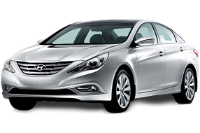 Накладки на пороги для Hyundai (Хюндай) Sonata 6 (YF) 2009-2014