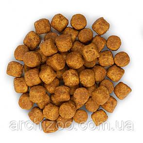 HILL'S SCIENCE PLAN Adult Large Breed Сухой Корм для Собак с Ягненком и Рисом - 14 кг, фото 2