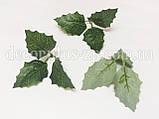 Лист остролиста 3-ка темно-зеленый. Вар №2, фото 2