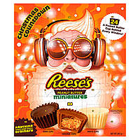 Advent Calendar Reese's Peanut Butter Miniatures 247g
