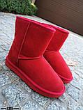 Женские стильные красные угги натуральная замша, фото 2
