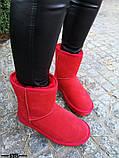 Женские стильные красные угги натуральная замша, фото 4