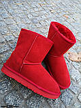 Женские стильные красные угги натуральная замша, фото 5