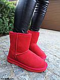 Женские стильные красные угги натуральная замша, фото 3