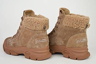 Ботинки темно-бежевые V.I.konty 20207 Кожа Мех осень-зима 38, фото 3