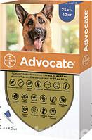 Капли Адвокат для собак от 25 до 40кг 4 мл №1 Bayer