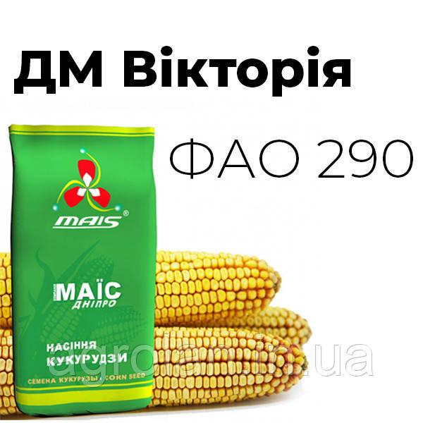 ДМ Вікторія ФАО 290