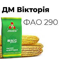 ДМ Вікторія ФАО 290, фото 1