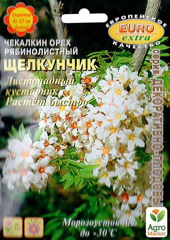 Насіння Чекалкін горіх рябинолистный Лускунчик, 3шт.