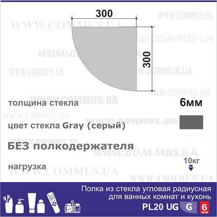 Угловая стеклянная полка PL20 URG(300x300), фото 2