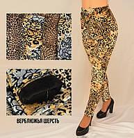 Лосины женские леопардовые на меху Брюки зимние утепленные с содержанием верблюжьей шерсти 5XL