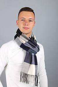 Чоловічі шарфи FAMO Чоловічий шарф Лестер сірий+фіолетовий 180*30 (MS-02) #L/A