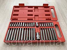 Набор бит LEX LXBS41P - 40шт - в пластиковом кейсе, фото 3