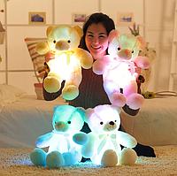 Светящиеся Медвежонки 50 см