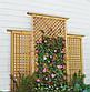 Дерев'яна декоративна решітка — 8P (Вільха, Бук, Клен, Ясень, Дуб), фото 10
