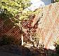 Деревянная декоративная решетка — 3S (Ольха, Бук, Клен, Ясень, Дуб), фото 5