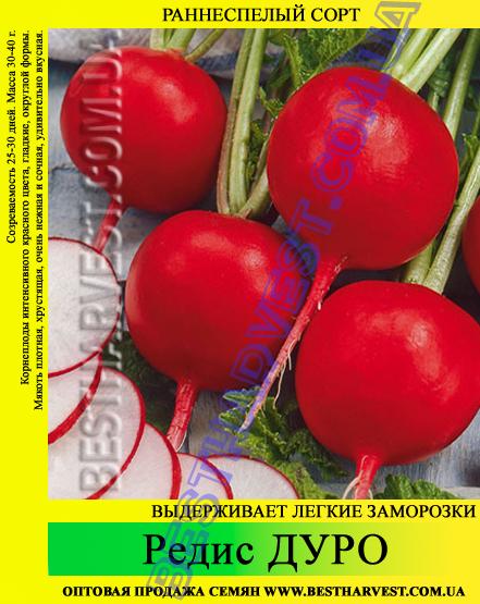 Семена редиса «Дуро» 25 кг (мешок)