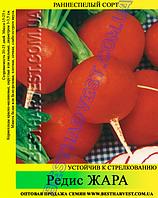 Семена редиса «Жара» 25 кг (мешок)
