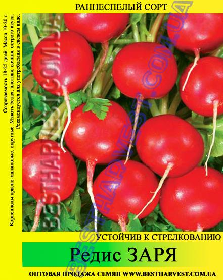 Семена редиса Заря 1 кг