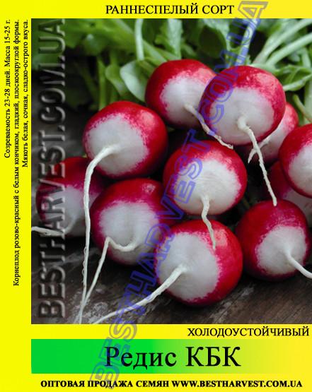 Семена редиса КБК 1 кг
