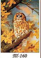 Картина из янтарной крошки Сова- декор для дома, подарок купить