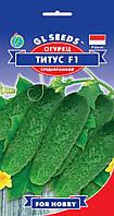 Огурец Титус F1 гибрид урожайный устойчивый среднеранний корнишон хрустящий, упаковка 0,4 г