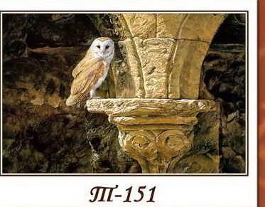 Картина из янтарной крошки- Сова в замке, 30\40 см,