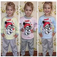 Пижама детская девочке тёплая ,на манжетах 100% (байка) , пижама девочке с французским бульдогом