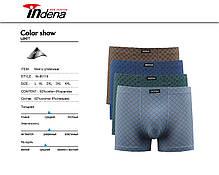 Мужские стрейчевые боксеры «INDENA»  АРТ.85119, фото 3