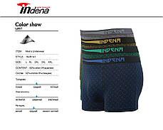 Мужские стрейчевые боксеры «INDENA»  АРТ.85141, фото 2