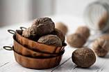 Мускатний горіх великий. Мускатный орех крупный. Орех мускатный отборный. 1 шт. 6-8 грам, фото 2