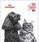 Про Бренд Royal Canin