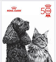 О Бренде Royal Canin