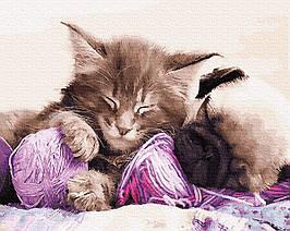 Картина за Номерами Бабусині улюбленці 40х50см RainbowArt