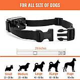 Электроошейник для собаки для дрессировки электронный Petrainer 620A-1 с 3-ми видами воздействия,, фото 3