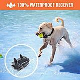 Электроошейник для собаки для дрессировки электронный Petrainer 620A-1 с 3-ми видами воздействия,, фото 4