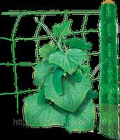 Сетка огуречная шпалерная Венгрия, рулон 500м.