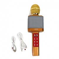 Караоке-микрофон беспроводной ABX DM WS-1828 Gold