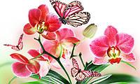 Алмазная вышивка мозаика Чарівний діамант Орхидея и бабочки КДИ-0504 30х50см 22цветов квадратные полная